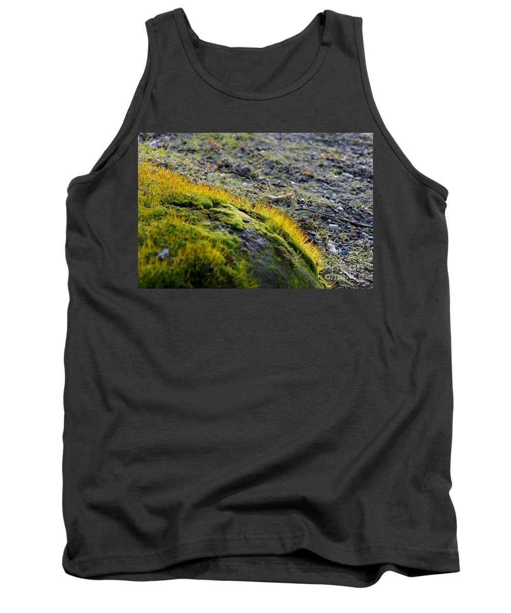 Nature Tank Top featuring the photograph Moss In The Light 1 by Felicia Tica