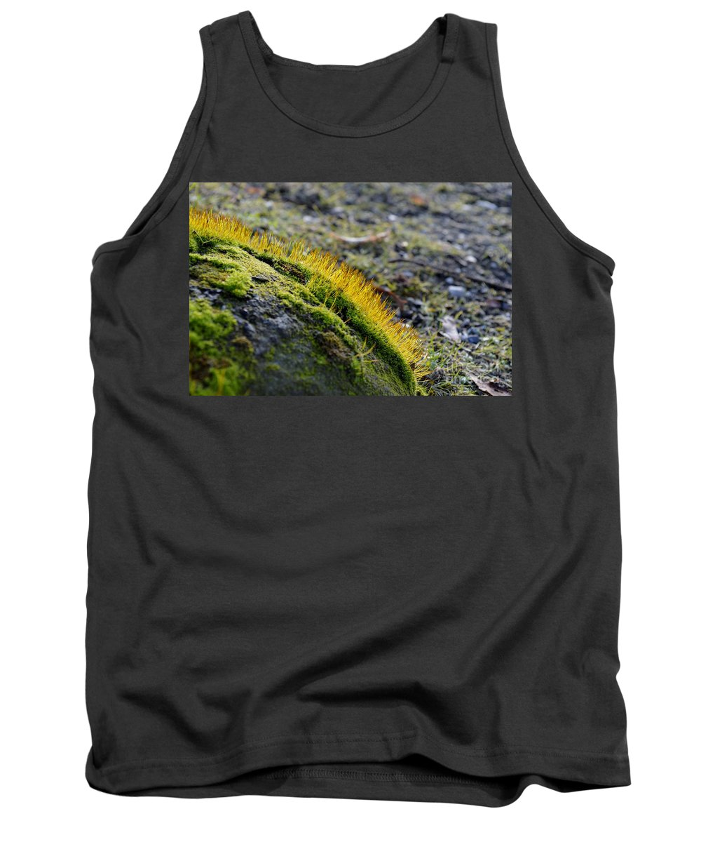 Close-up Tank Top featuring the photograph Moss In The Light by Felicia Tica