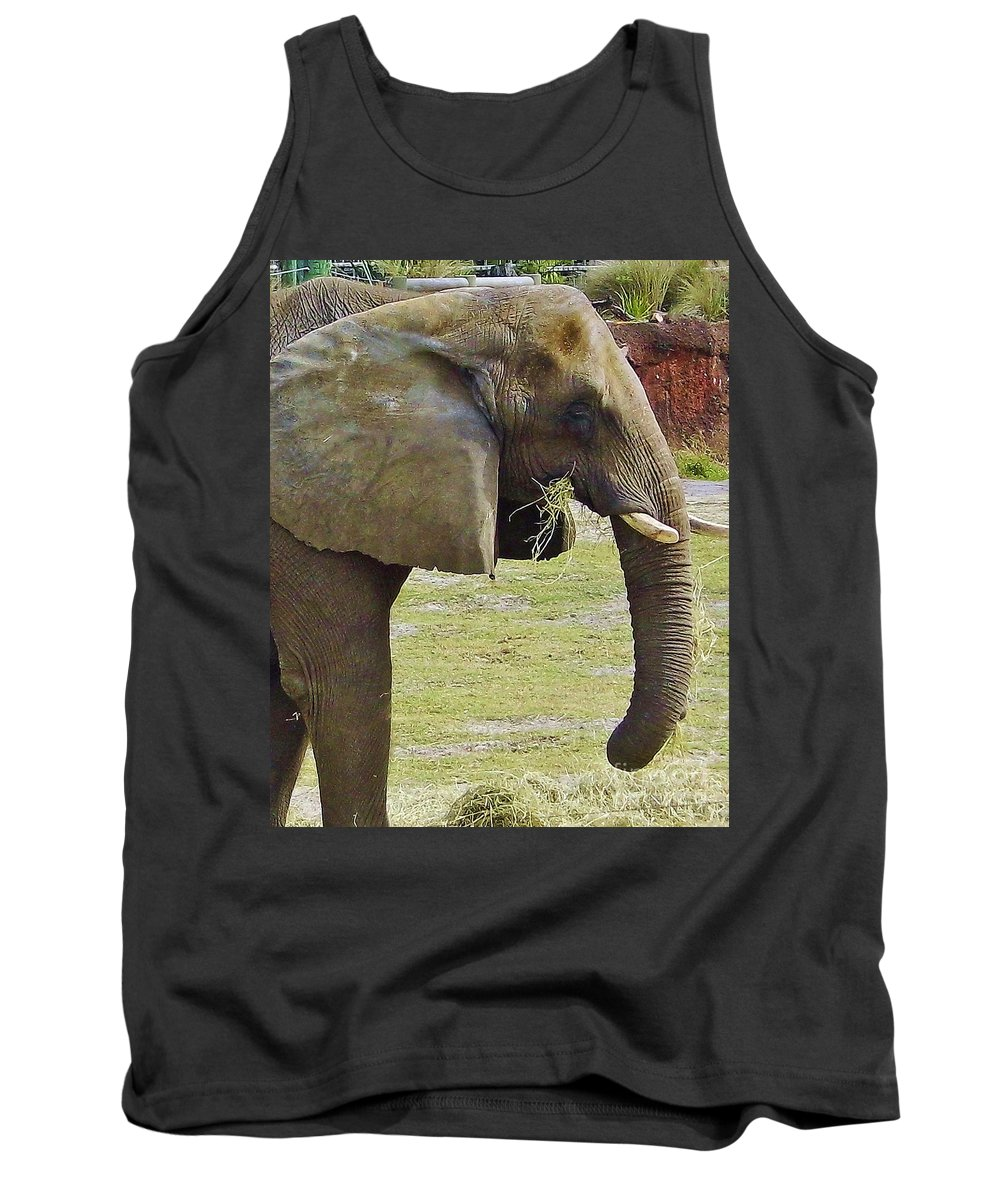 Elephant Tank Top featuring the photograph Mother Elephant by D Hackett