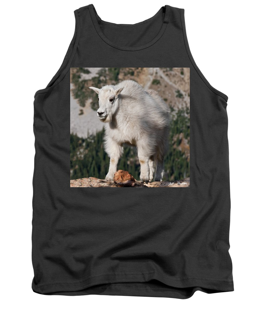 Alpine Tank Top featuring the photograph Mountain Goat Kid Standing On A Boulder by Jeff Goulden