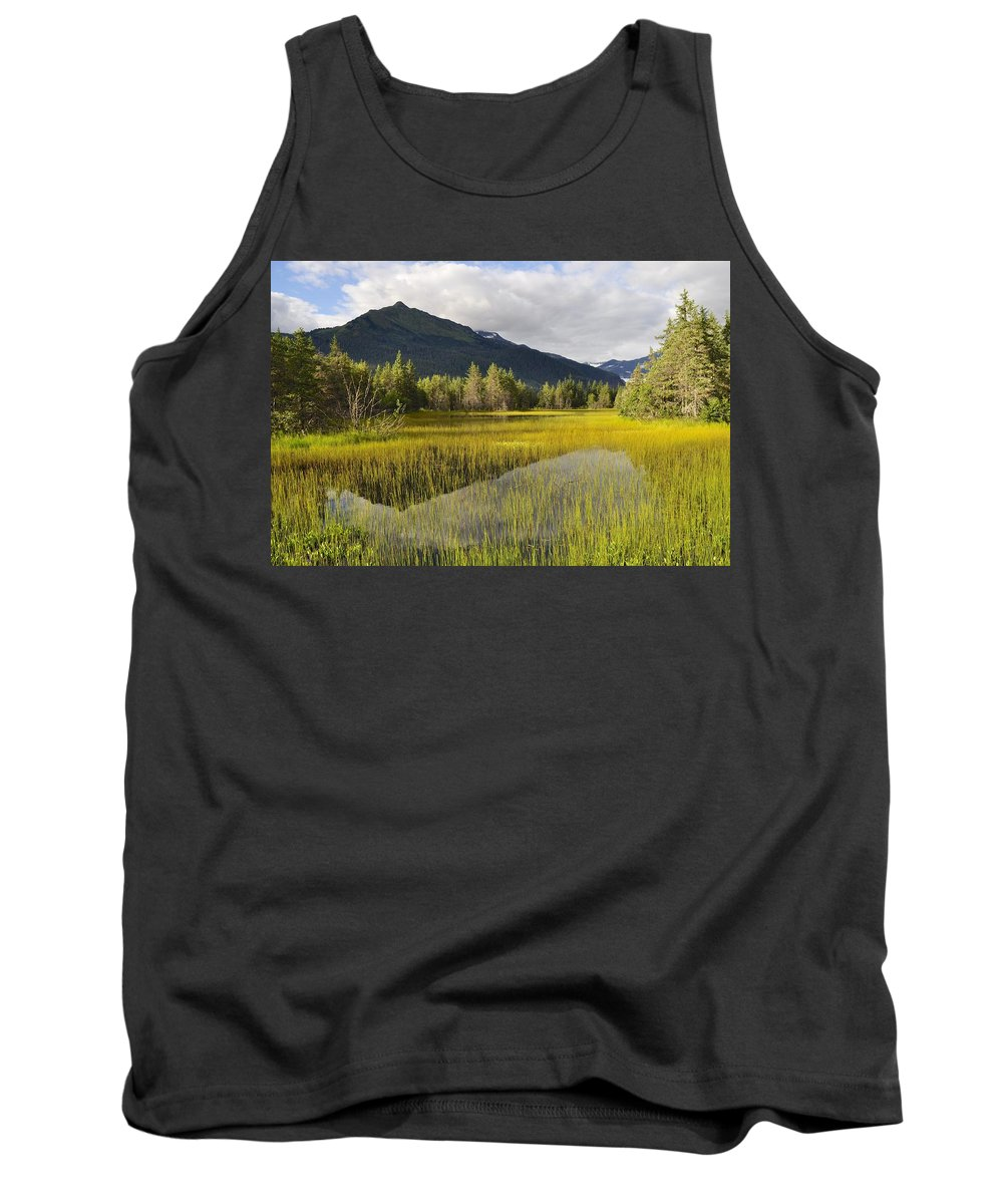 Mountain Tank Top featuring the photograph Mountain Reflection by Cathy Mahnke