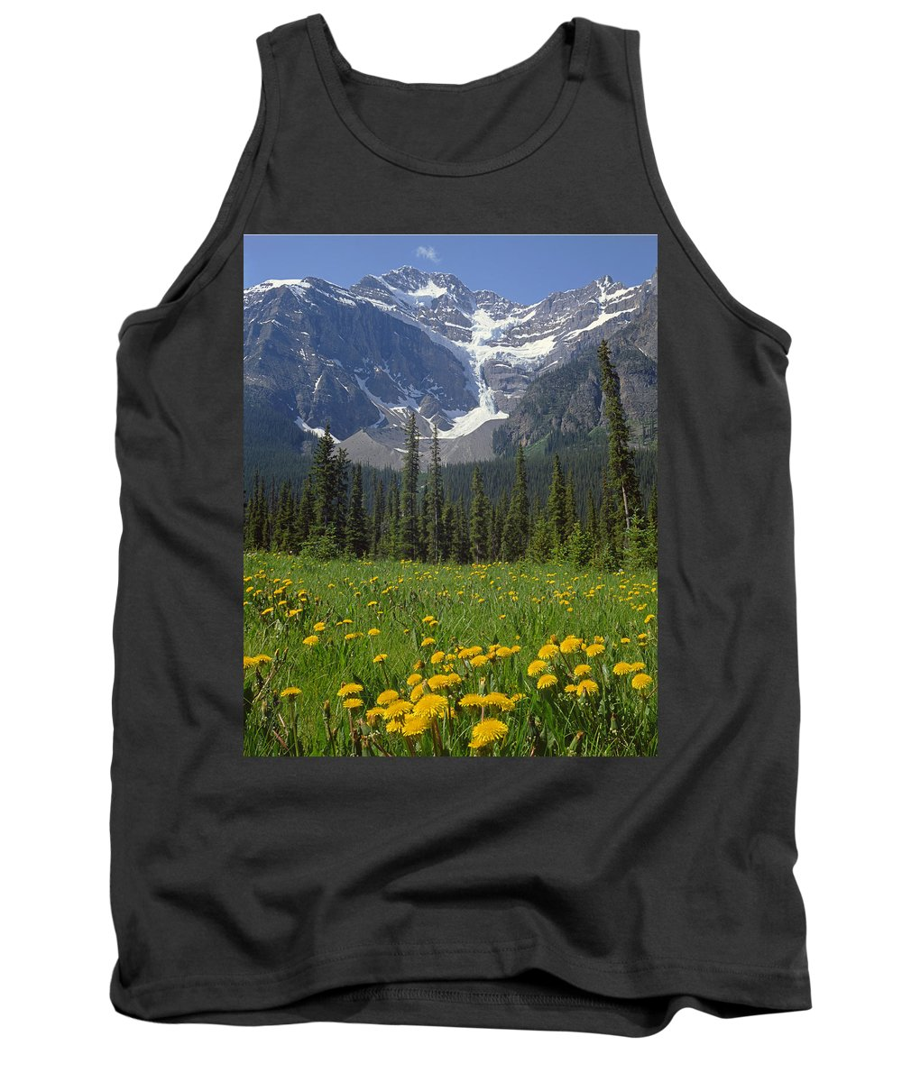 Mt. Patterson Tank Top featuring the photograph 1m3613-mt. Patterson And The Snowbird Glacier by Ed Cooper Photography