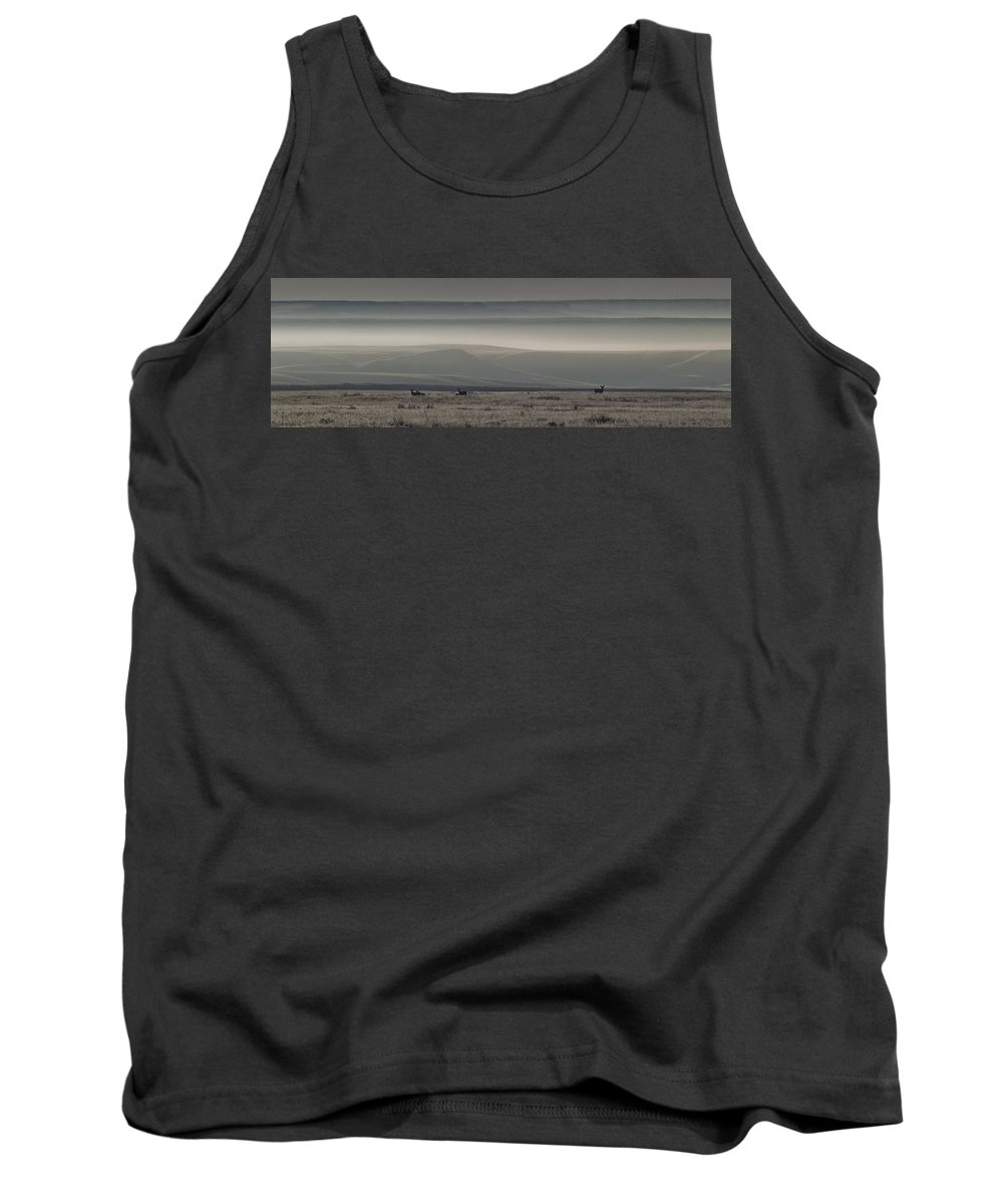 Butte Tank Top featuring the photograph Mule Deer On The Prairies With Fog by Robert Postma