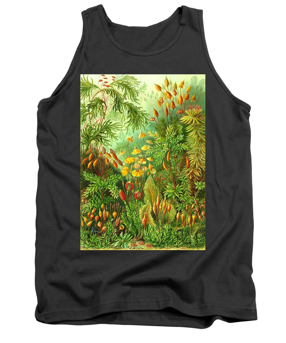 Muscinae Tank Top featuring the digital art Muscinae by Unknown