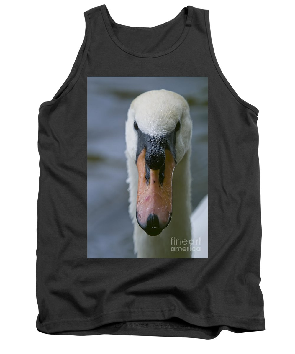 Mute Swan Tank Top featuring the photograph Mute Swan Pictures 88 by World Wildlife Photography