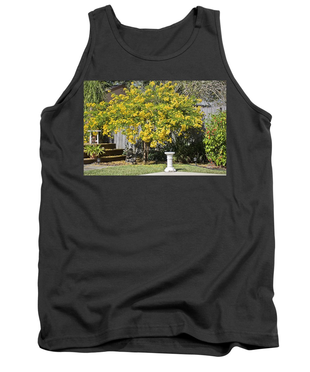 Acacia Tank Top featuring the photograph My Acacia Tree by Rich Franco