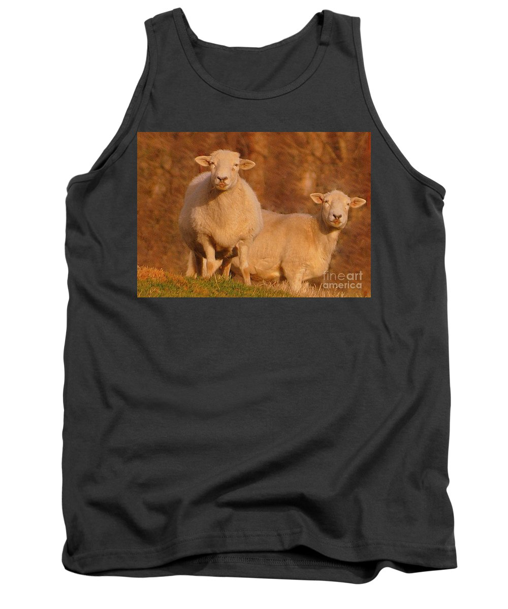 Sheep Tank Top featuring the photograph My Sheep ...  by Lydia Holly