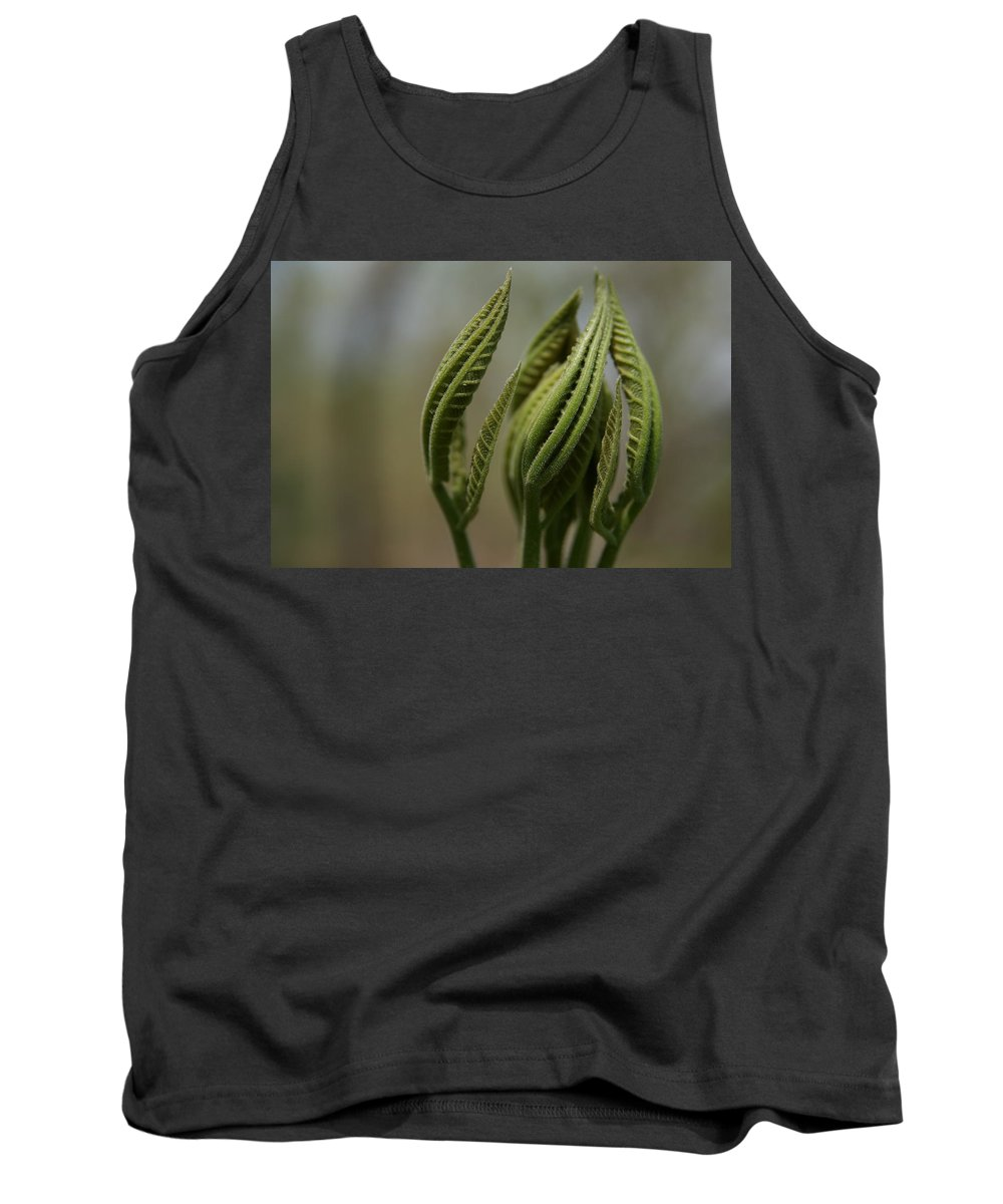 Leaf Tank Top featuring the photograph Natural Texture by Neal Eslinger