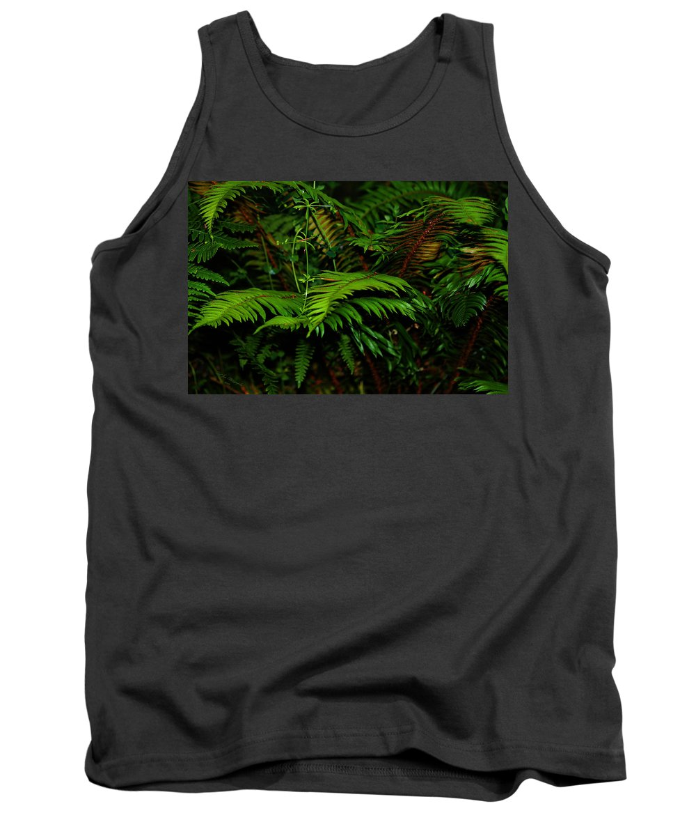 Capitol Forest Tank Top featuring the photograph Nature In The Pacific Nw by Jeanette C Landstrom