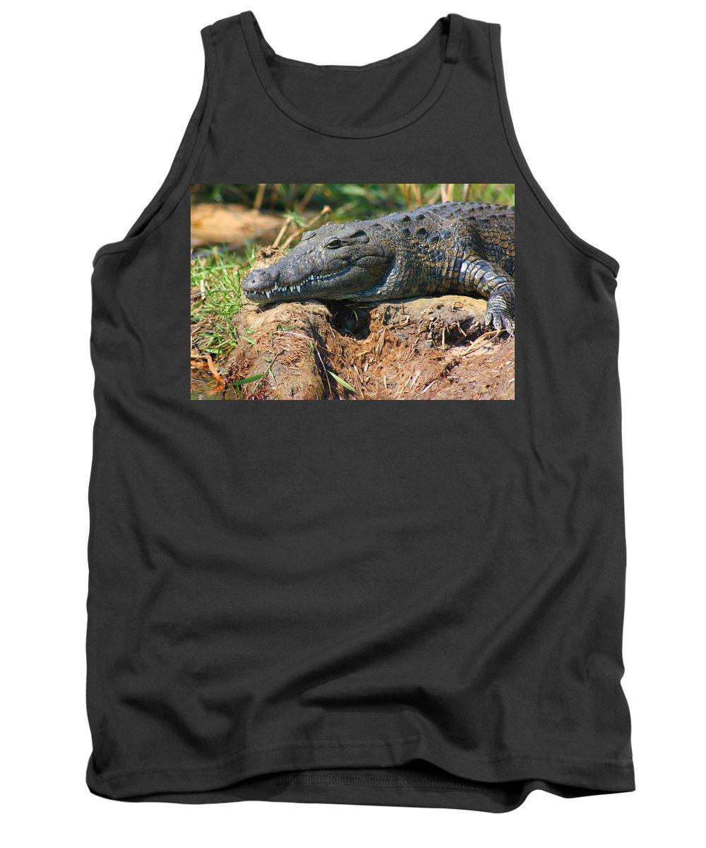 Crocodile Tank Top featuring the photograph Nile Crocodile by Amanda Stadther