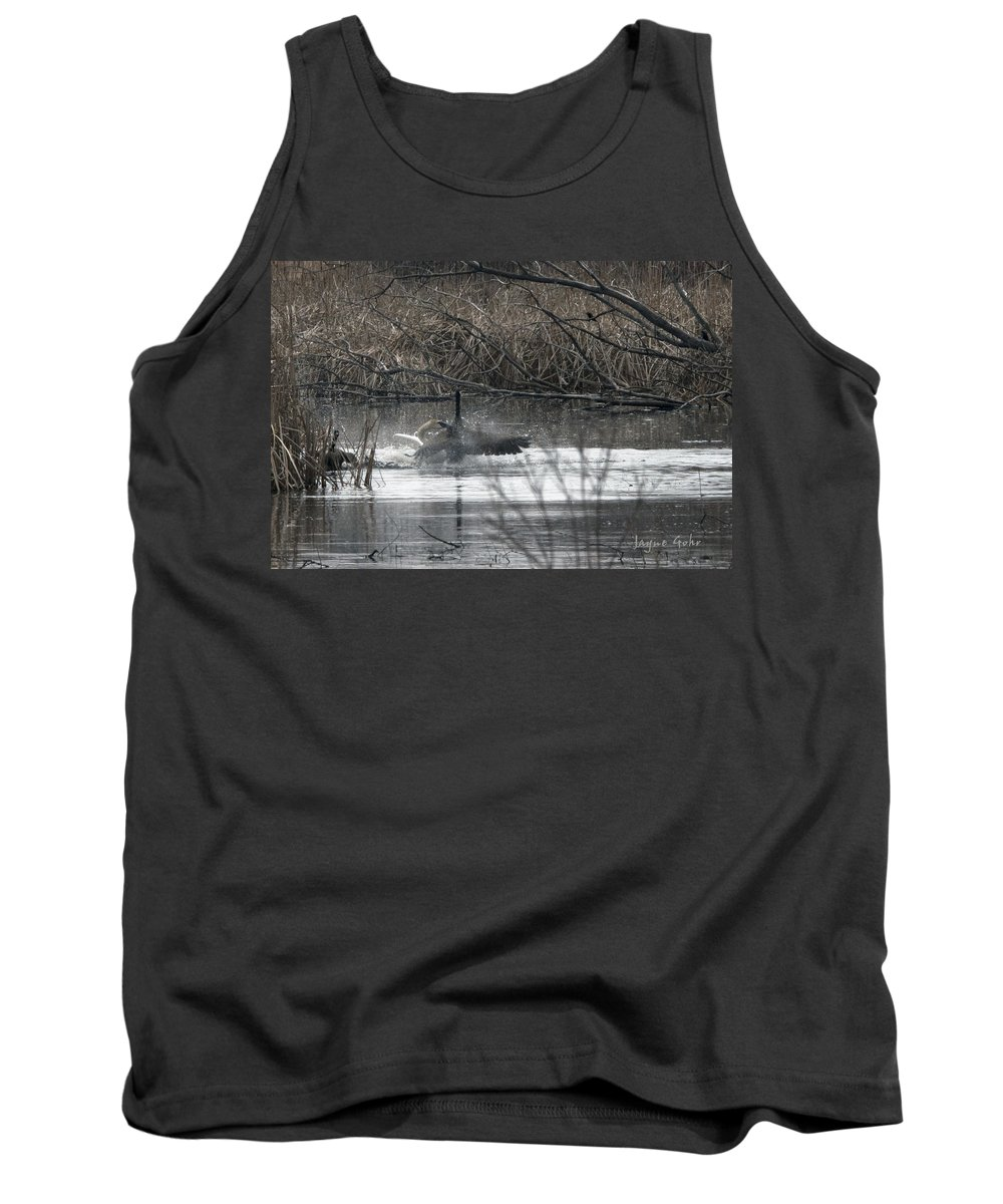Trumpeter Swan Tank Top featuring the photograph Nip Time by Jayne Gohr