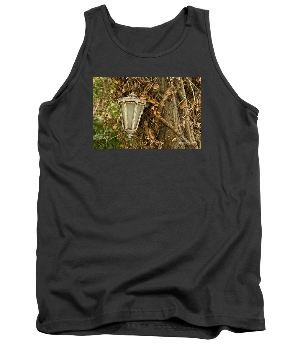 Lamp Tank Top featuring the photograph Old Lamp Hanging On Tree by Leyla Ismet