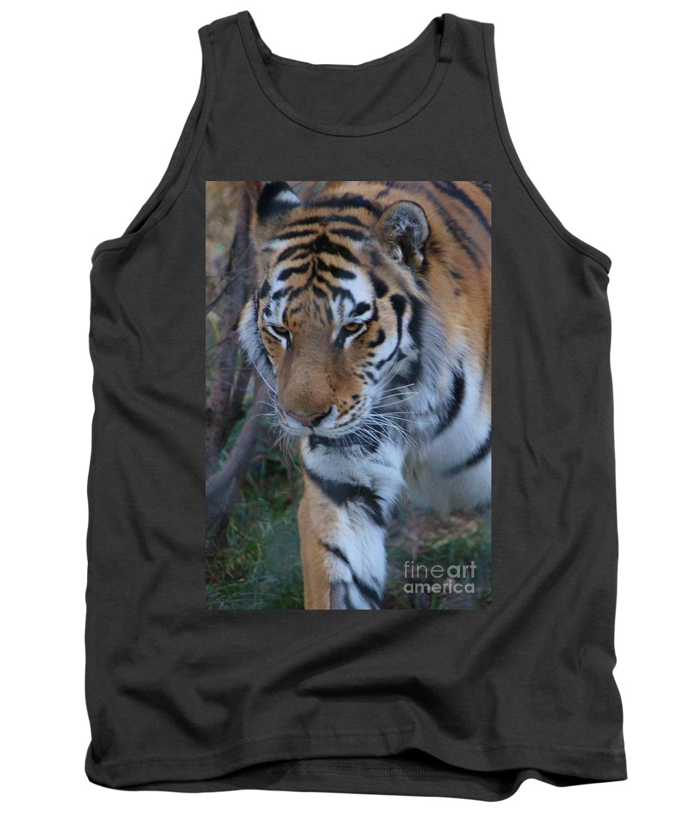 Zoo Tank Top featuring the photograph On The Prowl by Tonya Hance