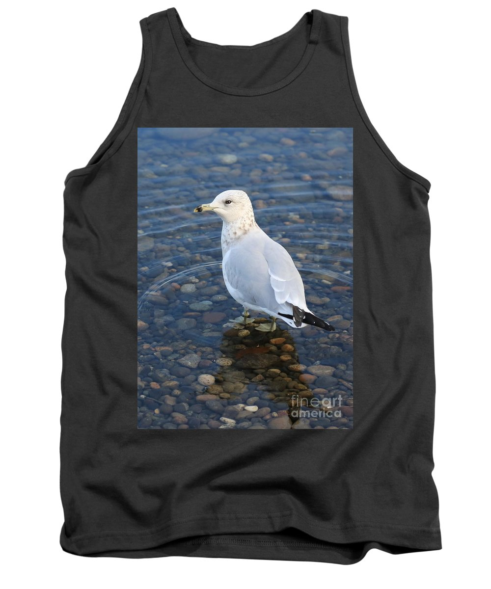 Gull Tank Top featuring the photograph On The Rocks by Carol Groenen