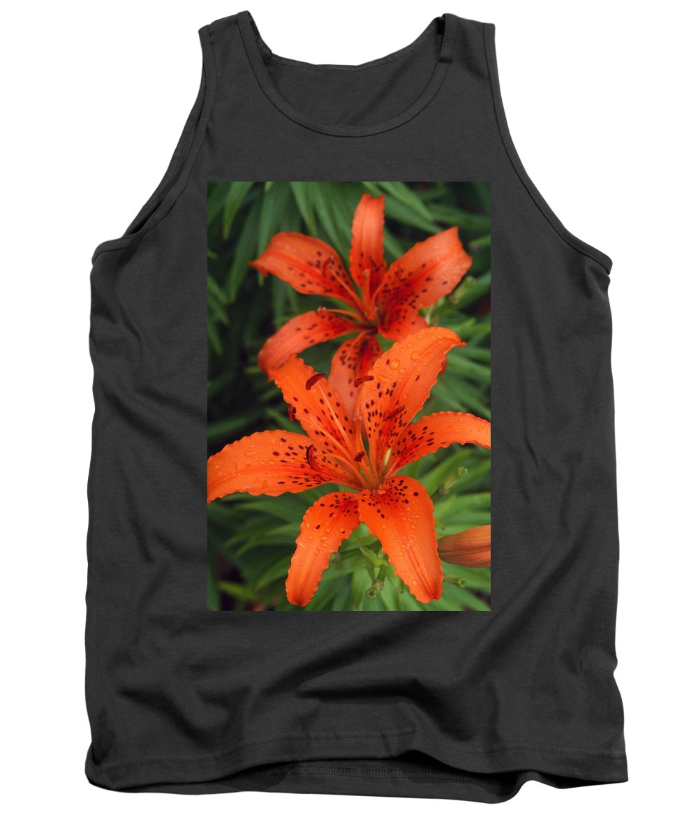 Blooming Tank Top featuring the photograph Orange Day Lilies by Natural Selection Tony Sweet