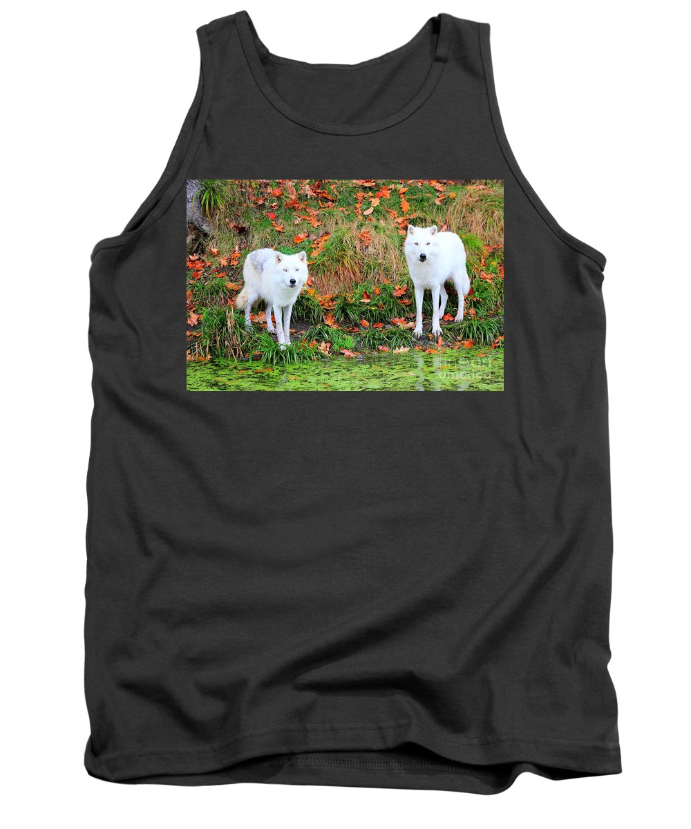 Meeting Tank Top featuring the photograph Our First Meeting by Vicki Spindler