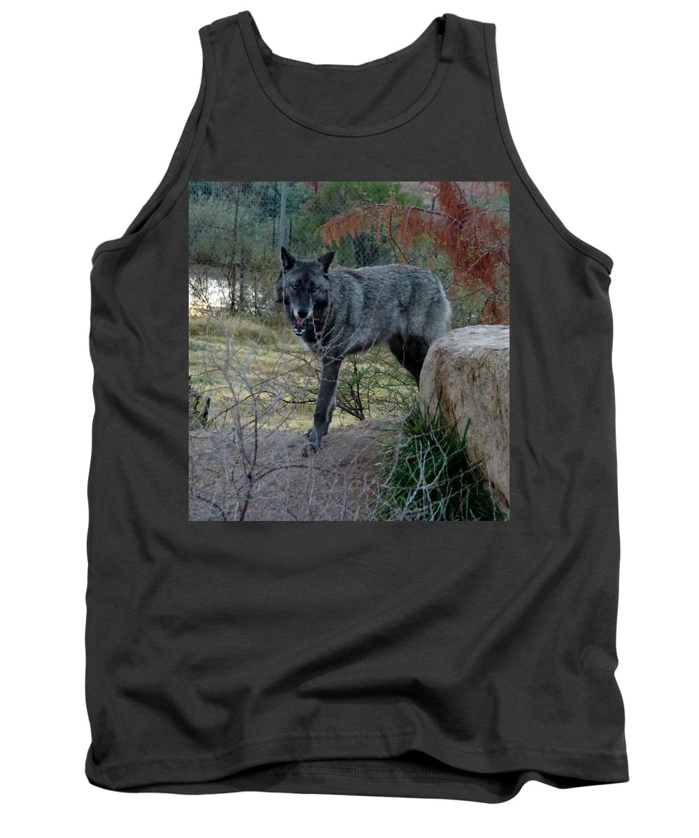 Out Of Africa Tank Top featuring the photograph Out Of Africa Black Wolf by Phyllis Spoor