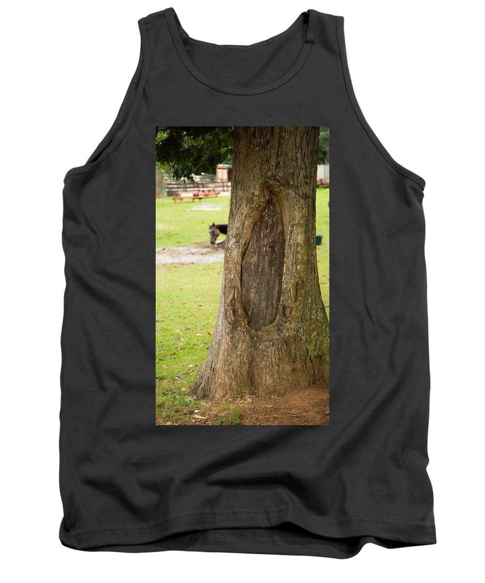Tree Tank Top featuring the photograph Oval Tree Art by Christy Cox
