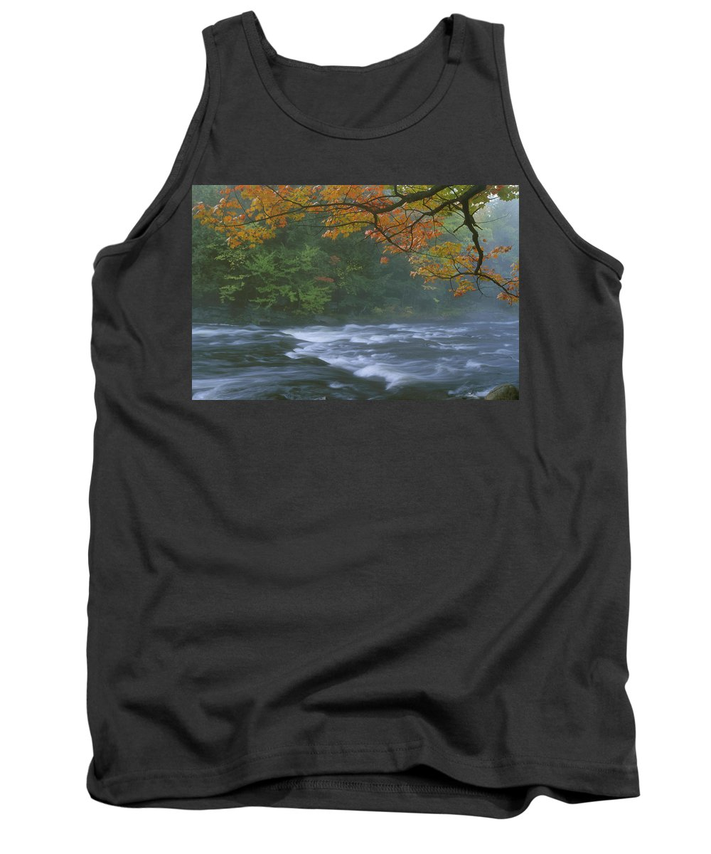 Color Image Tank Top featuring the photograph Oxtongue River Provincial Park, Dwight by Doug Hamilton
