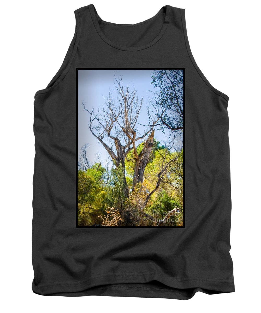 Patagonia Reserve Tank Top featuring the photograph Patagonia 27 by Larry White