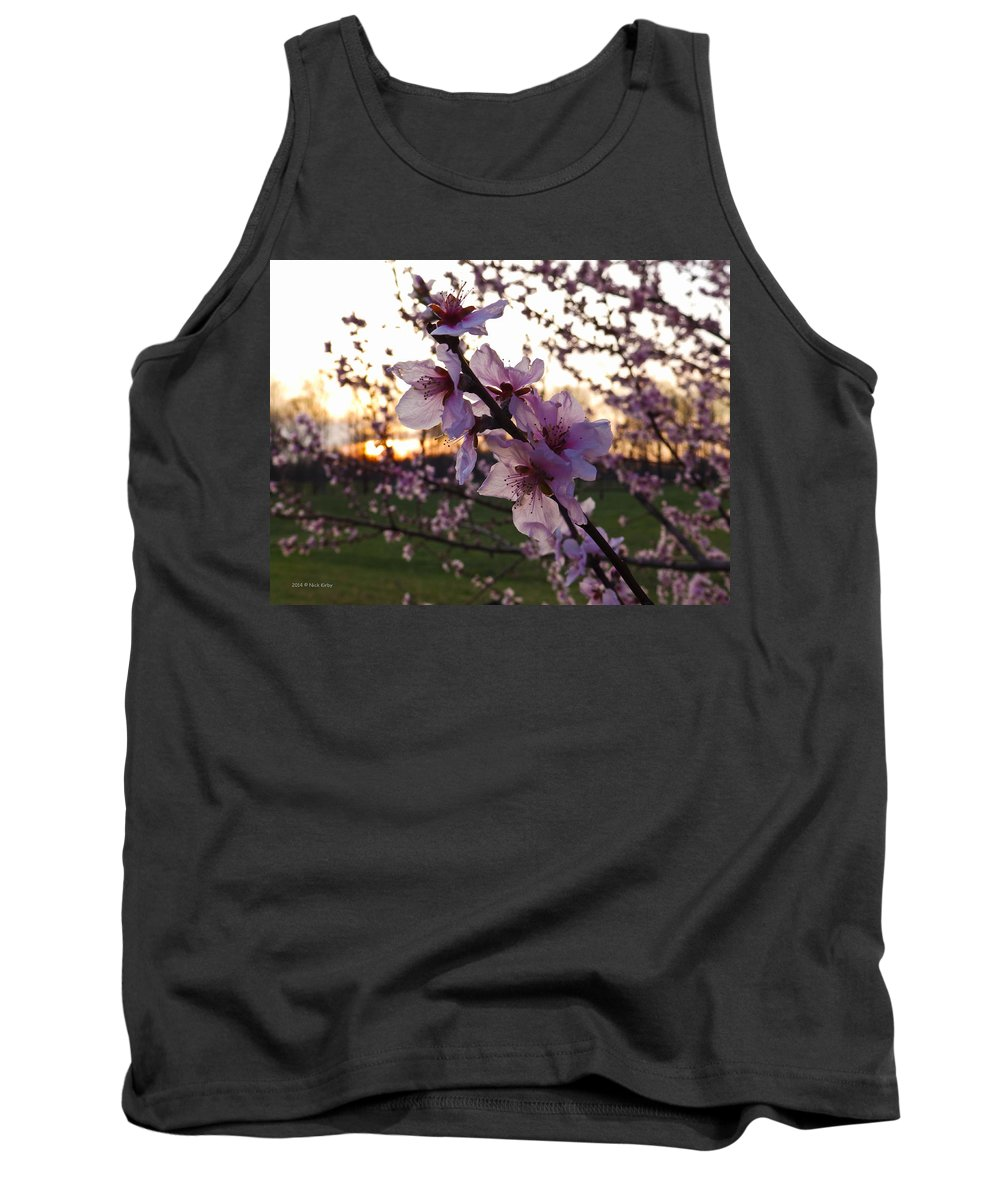 Peach Tank Top featuring the photograph Peachy Sunset 2014 #2 by Nick Kirby
