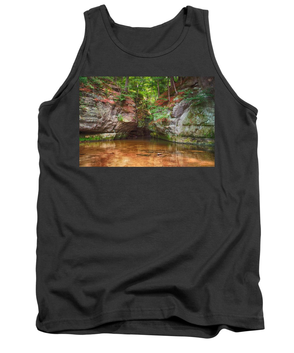 Pewits Nest Tank Top featuring the photograph Pewits Nest by Jonah Anderson