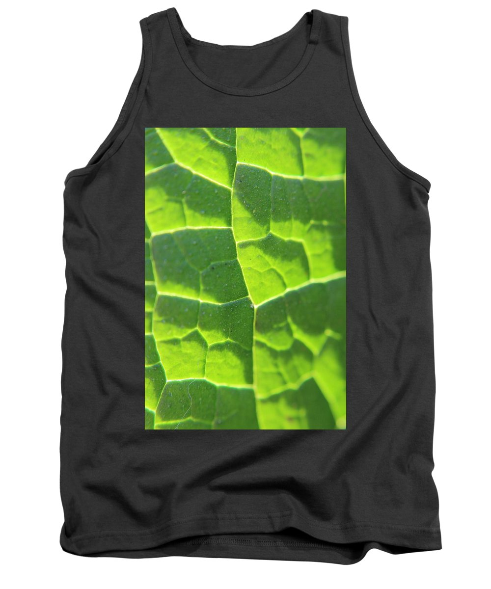 Leaf Tank Top featuring the photograph Photosynthesis by Robert Phelan