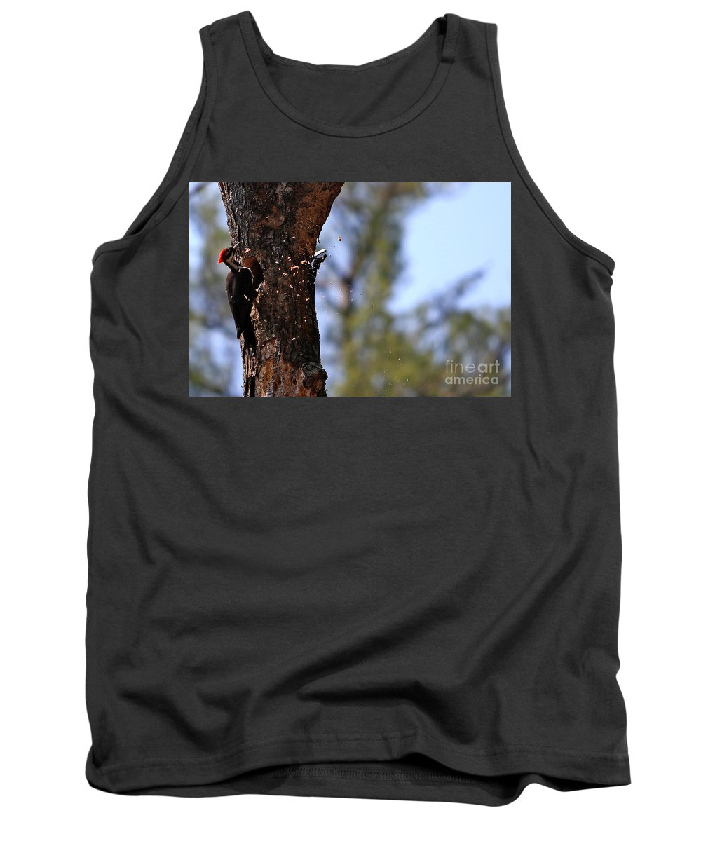 Birds Tank Top featuring the photograph Pileated Series #5 by James F Towne