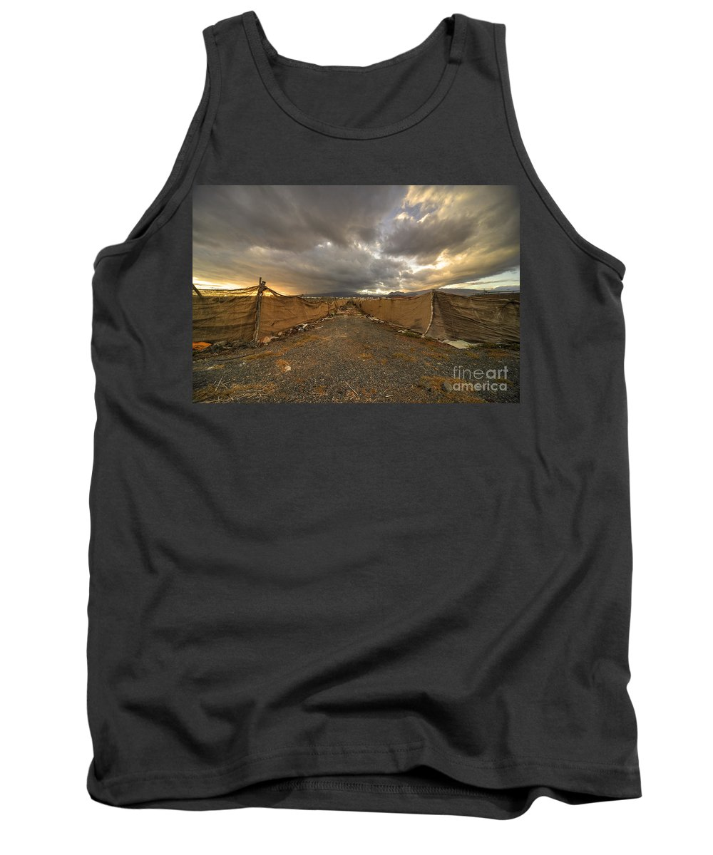 Plantation Tank Top featuring the photograph Plantation Twylight by Rob Hawkins