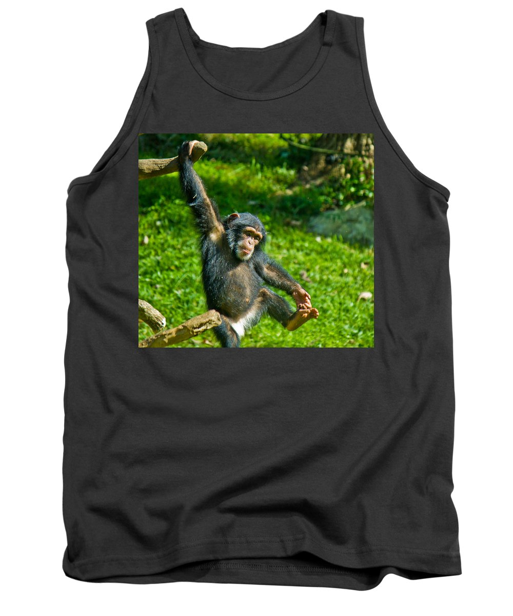 Animals Andearth Tank Top featuring the photograph Playful Chimp by Jonny D