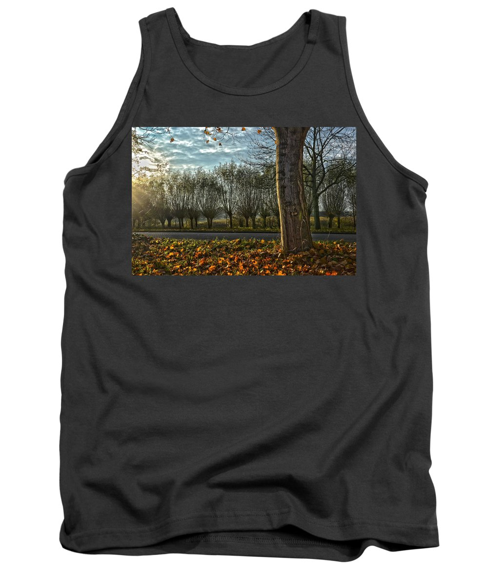 Holland Tank Top featuring the photograph Pollard Willows In Rotterdam by Frans Blok