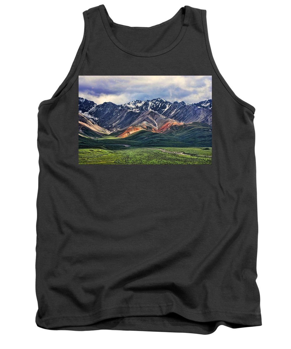 Polychrome Tank Top featuring the photograph Polychrome by Heather Applegate
