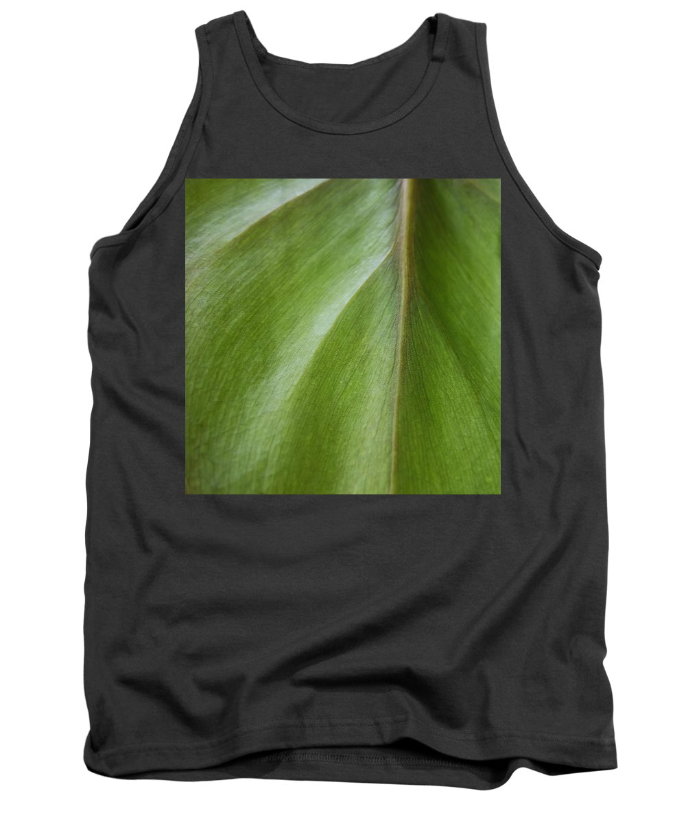 Pothos Tank Top featuring the photograph Pothos Detail by David Stone