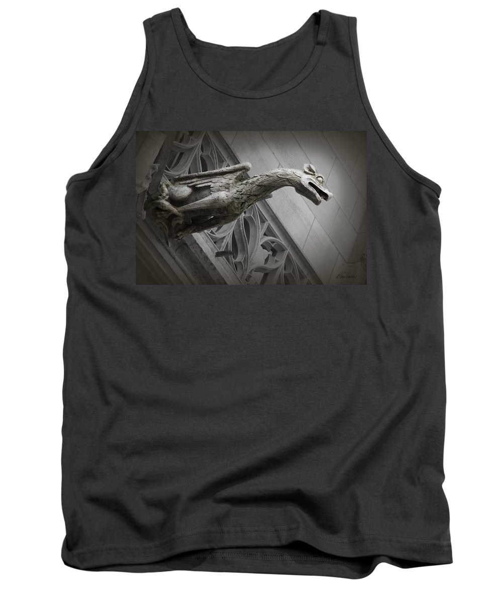 France Tank Top featuring the photograph Pouncing Dragon by Diana Haronis