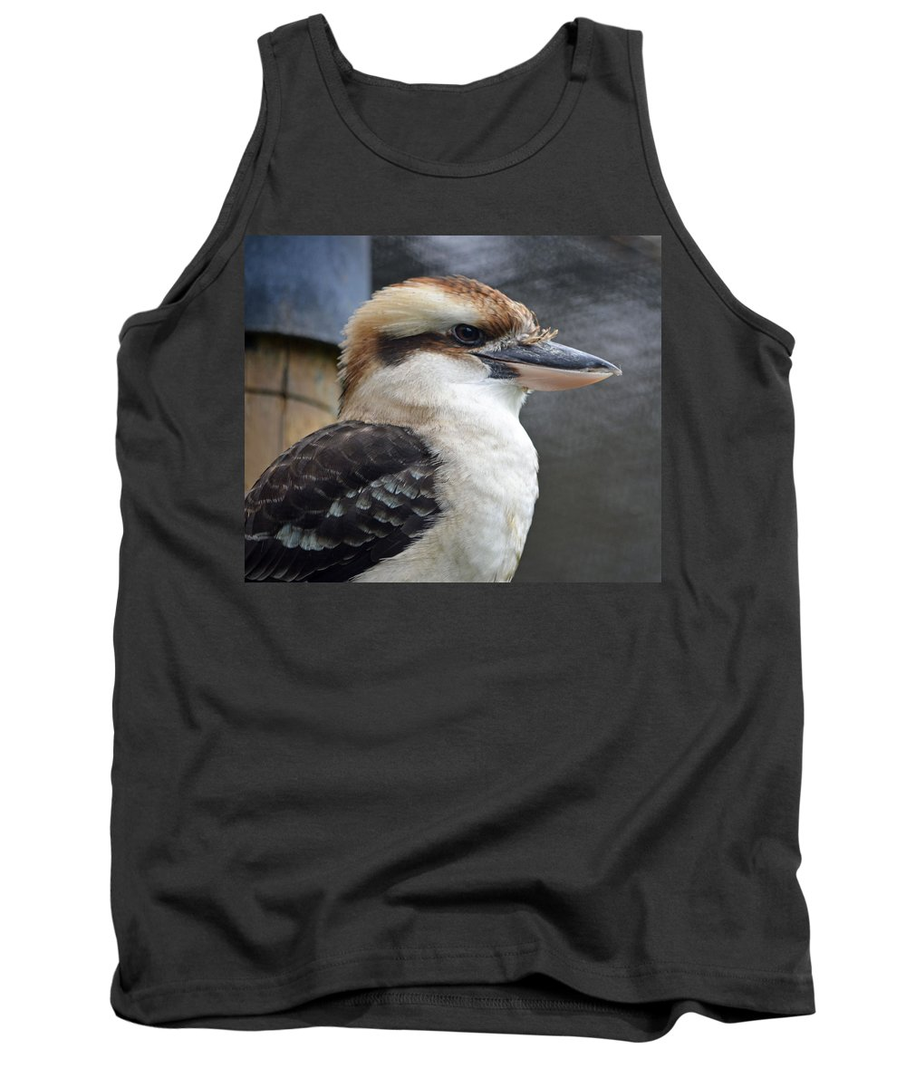 Kookaburra Tank Top featuring the photograph Proud Kookaburra by Richard Bryce and Family