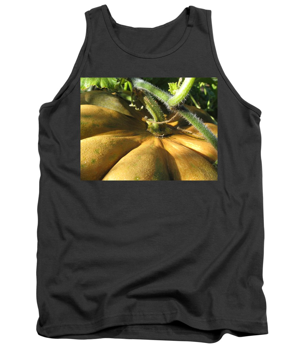 Close Up Tank Top featuring the photograph Pumpkin Ripe by Noa Mohlabane