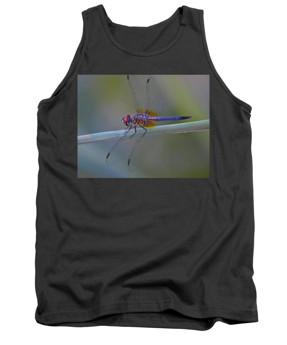 Purple Tank Top featuring the photograph Purple And Yellow Dragonfly On Navarre Beach by Jeff at JSJ Photography