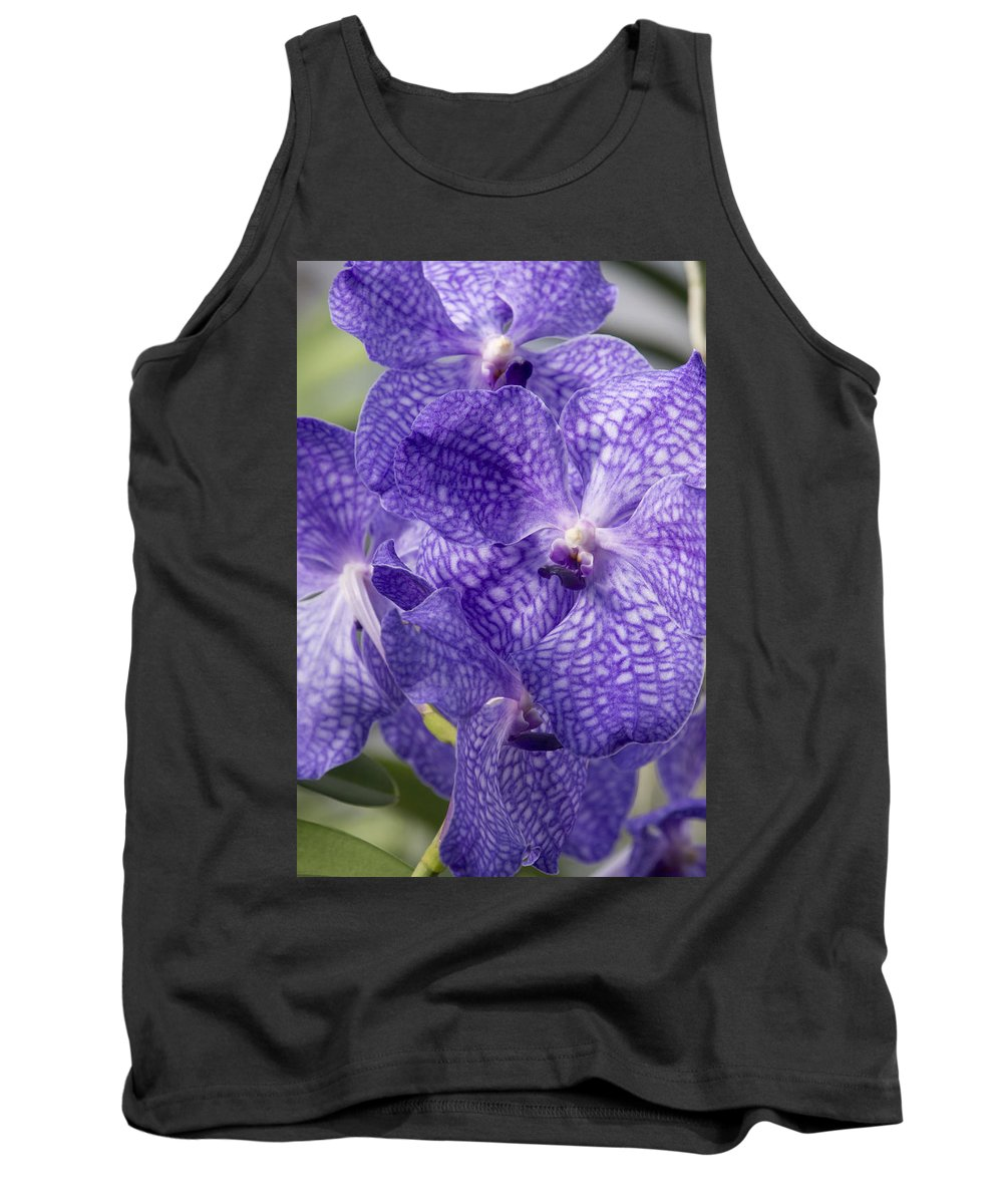 Orchids Tank Top featuring the photograph Purple Orchids by Elena Perelman