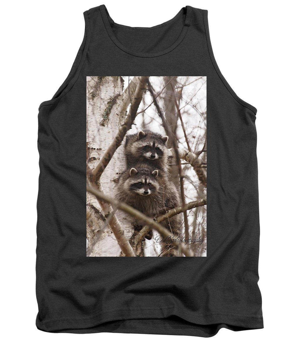 Tree Tank Top featuring the photograph Raccoon Siblings by Danielle Silveira