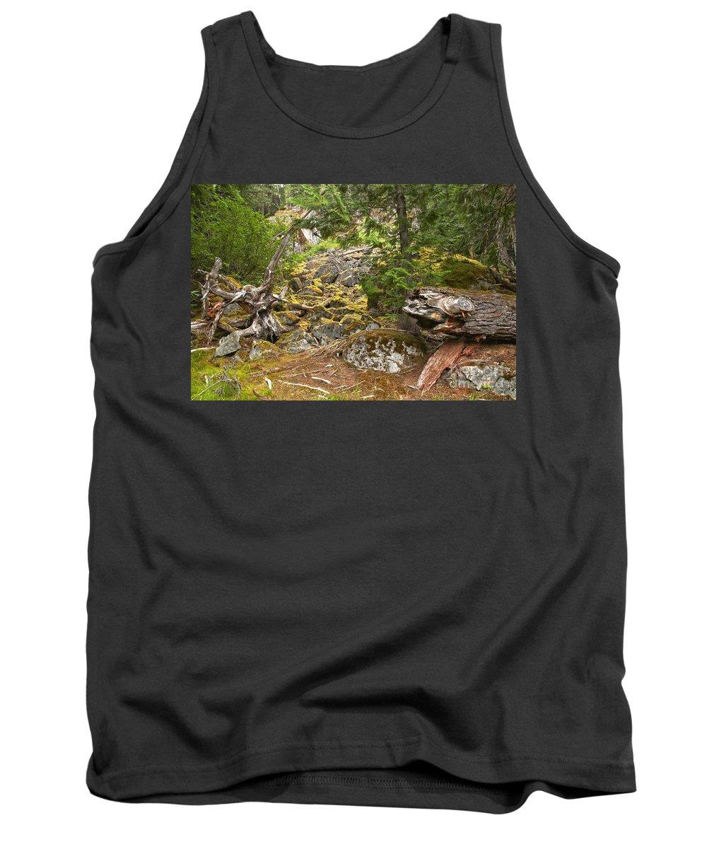 Cheakamus Rainforest Tank Top featuring the photograph Rainforest Rock Slide by Adam Jewell