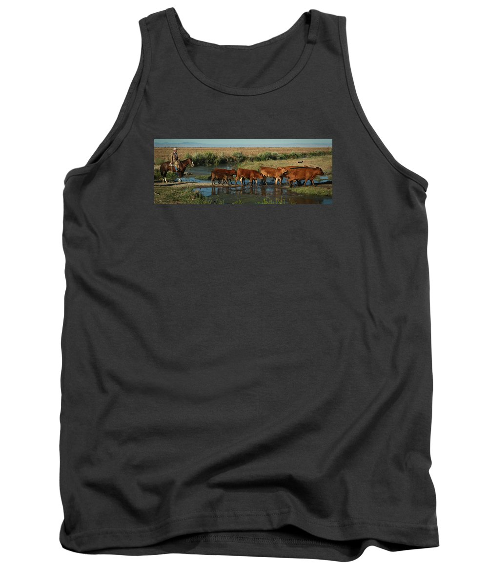 Cattle Tank Top featuring the photograph Red Cattle by Diane Bohna
