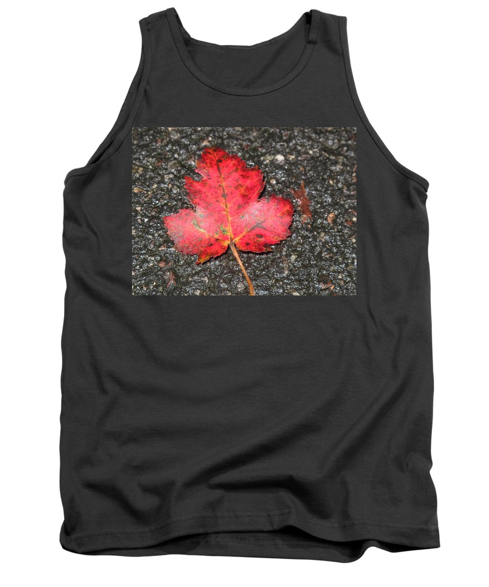 Leaves Tank Top featuring the photograph Red Leaf On Pavement by Barbara McDevitt