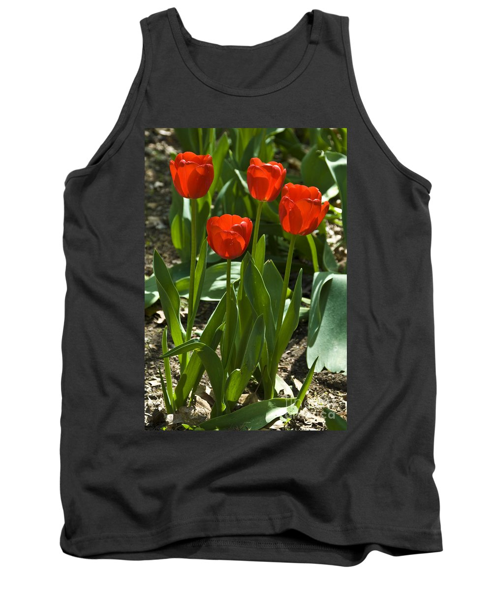 Flower Tank Top featuring the photograph Red Tulips by Anthony Sacco