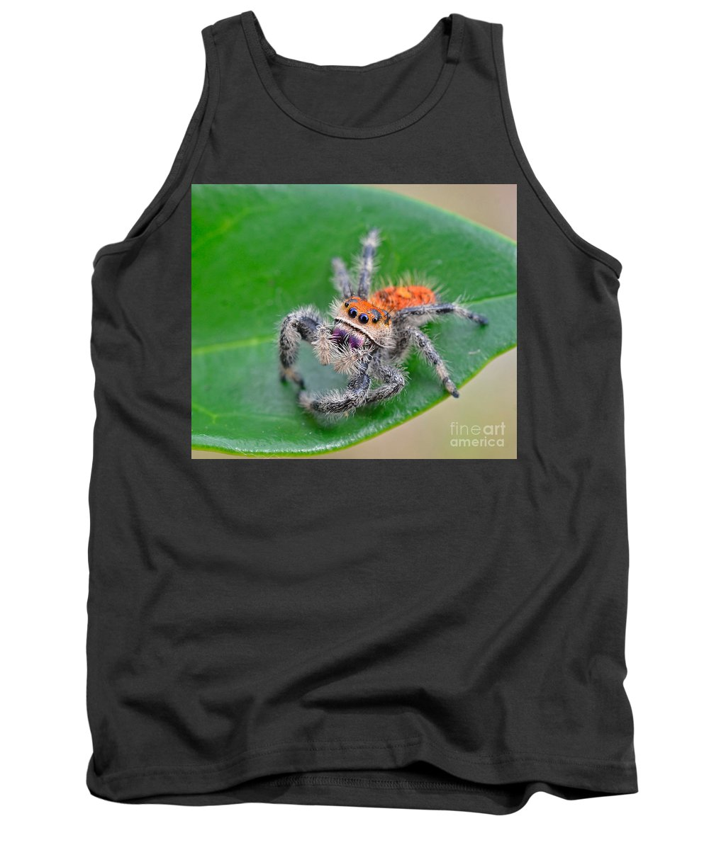Jumping Spider Tank Top featuring the photograph Regal Jumping Spider by John Serrao