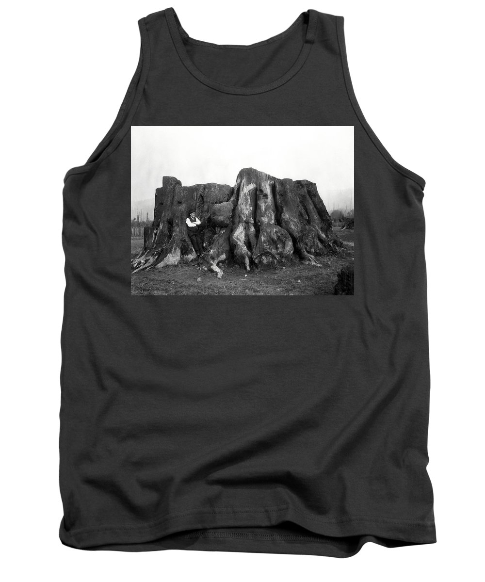 Redwood Tank Top featuring the photograph Remnant Of A Giant C. 1890 by Daniel Hagerman