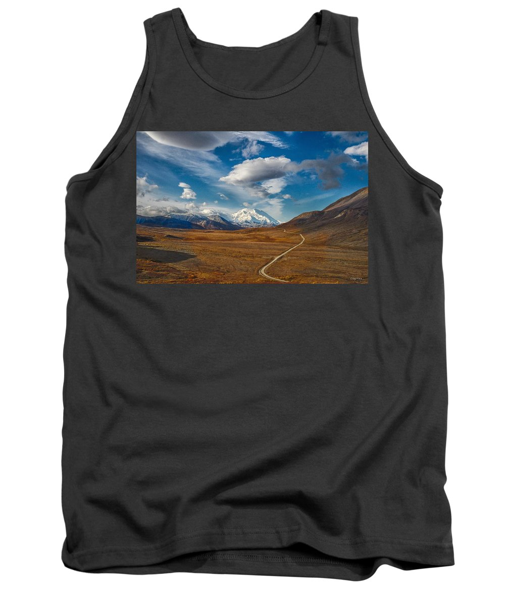Mountian Tank Top featuring the photograph Road To Denali by Craig Voth