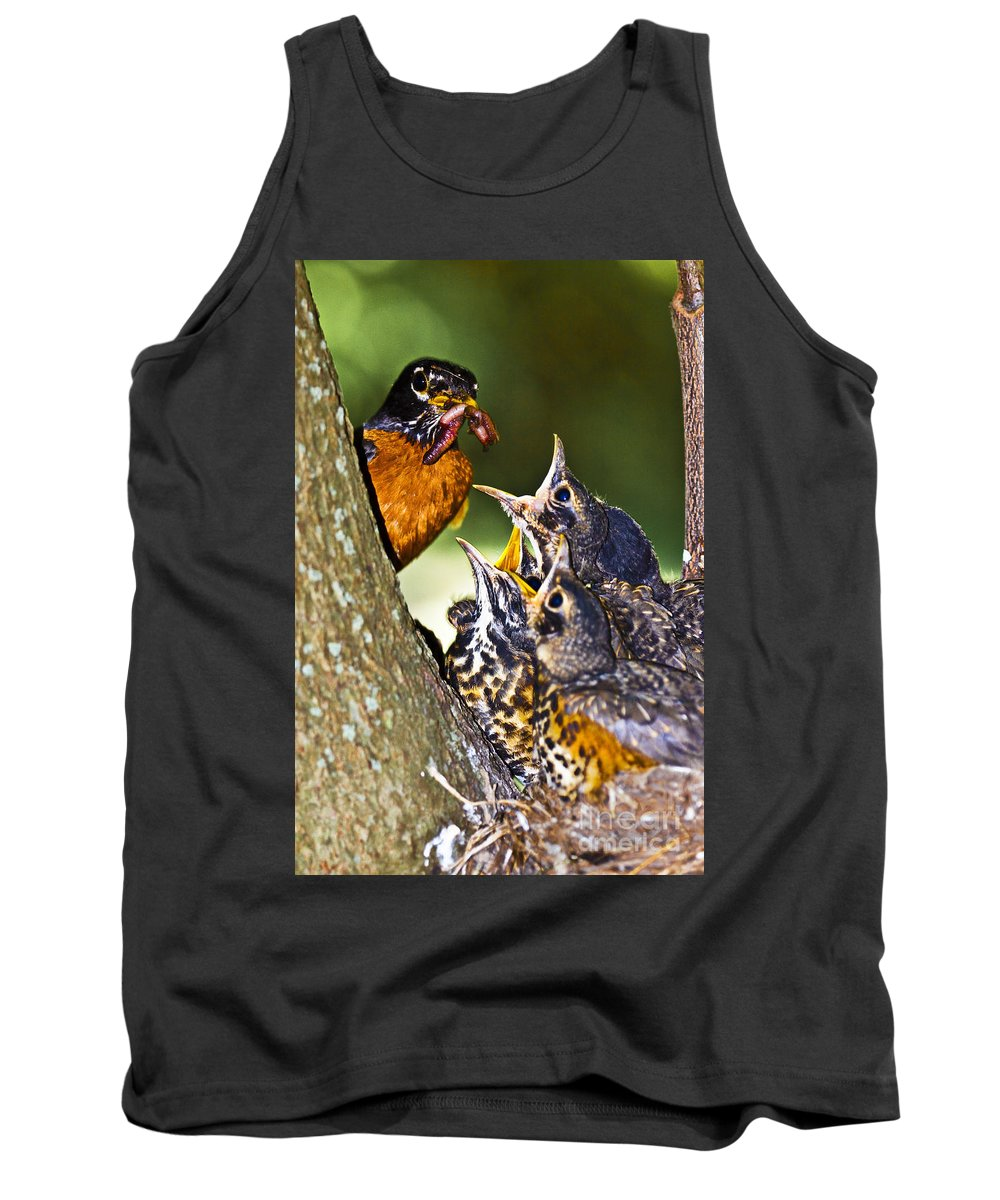 Blackwater Tank Top featuring the photograph Robin Family by Ronald Lutz