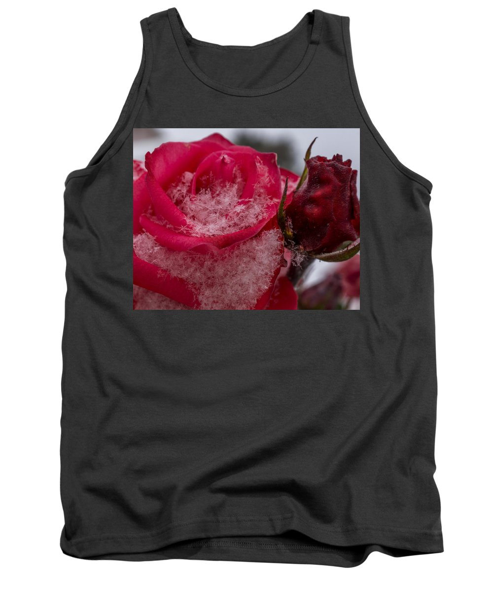 Pink Roses Tank Top featuring the photograph Rose Flakes 1 by Ernie Echols