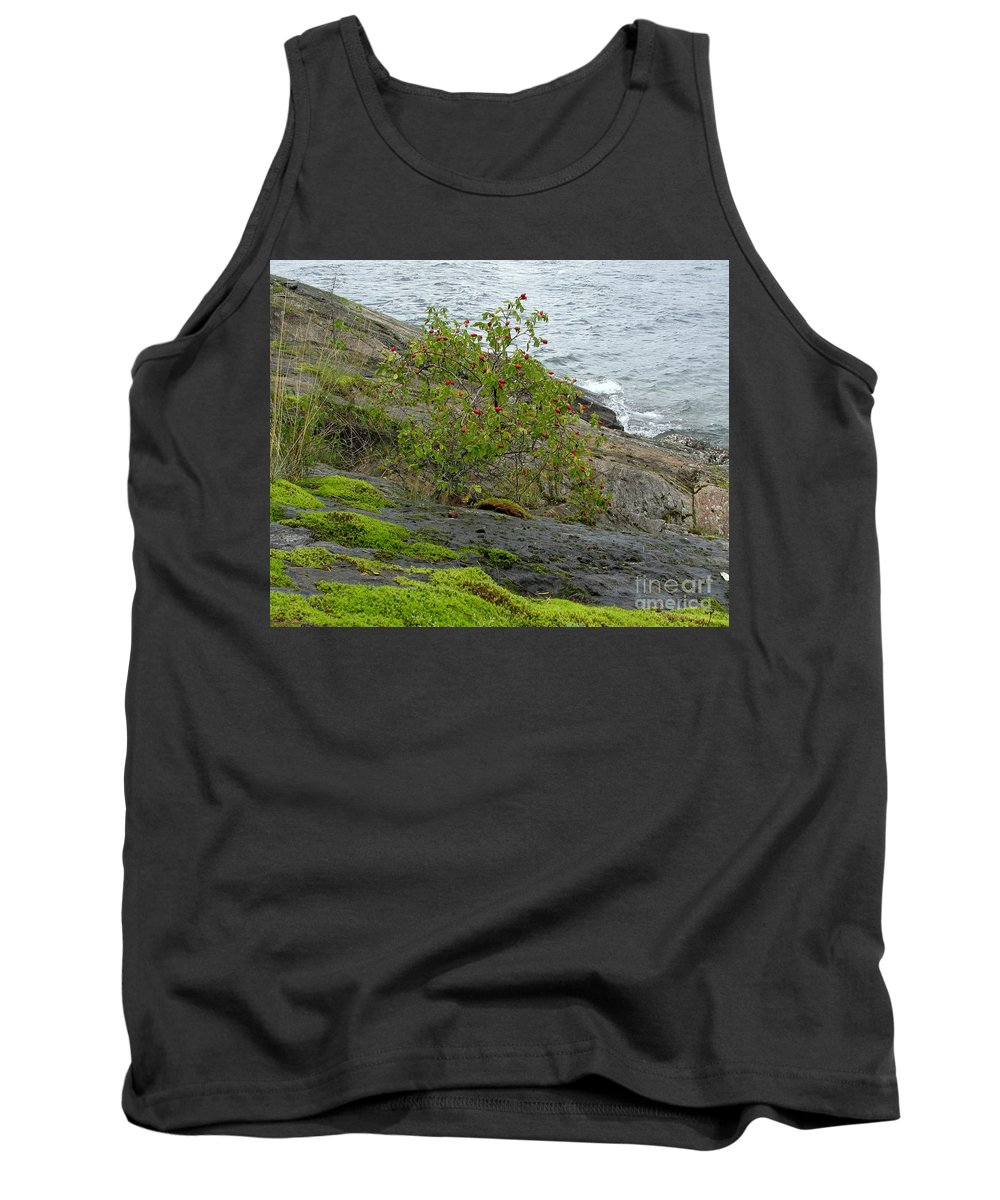 Rose Tank Top featuring the photograph Rose Hip Bush by Leone Lund