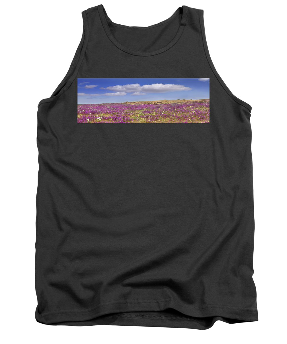 Feb0514 Tank Top featuring the photograph Sand Verbena On The Imperial Sand Dunes by Tim Fitzharris
